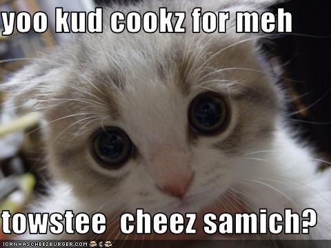 Cheezburger Image 3154030592