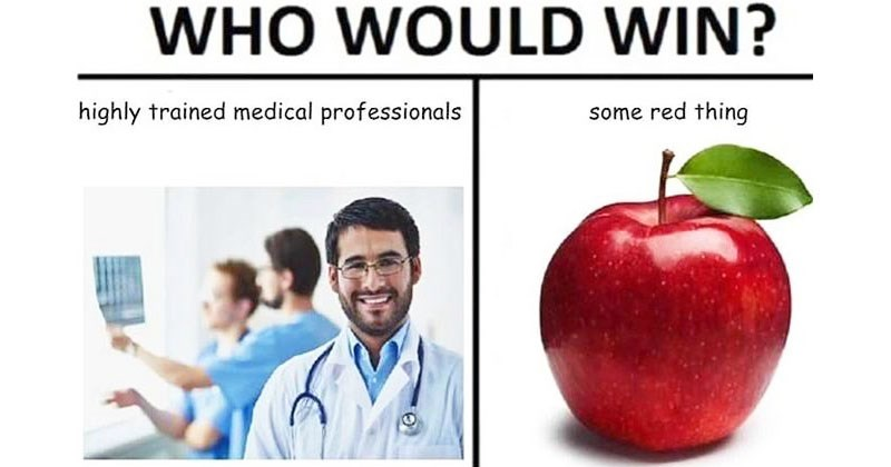 Collection of random memes and funny memes about doctors, apples, dogs, cats, bacon, marriage, relationships, food, drinking, animals, dolphins, dating, science.