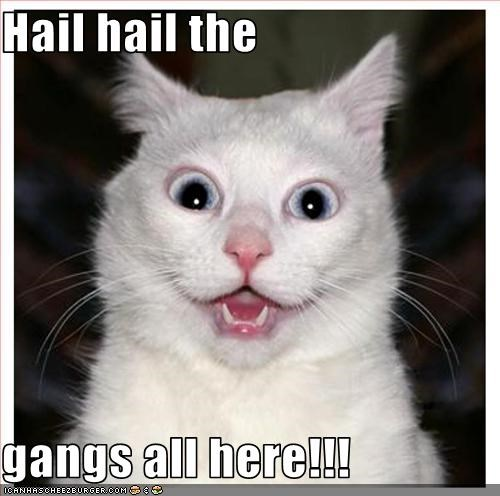 Hail hail the gangs all here!!! - Cheezburger - Funny Memes | Funny Pictures