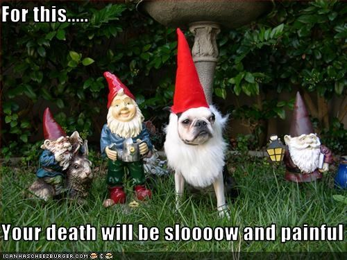 boston terrier,garden,gnome,hat,kill,pain,revenge,slow