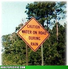 caution,facepalm,failboat,oddly specific,oh really,road signs