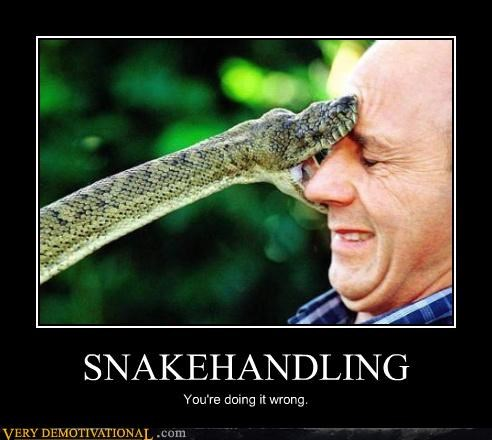 SNAKEHANDLING You're doing it wrong.