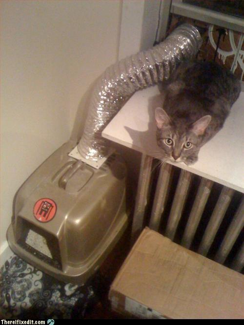 air vent cat litter box window - 3162023936