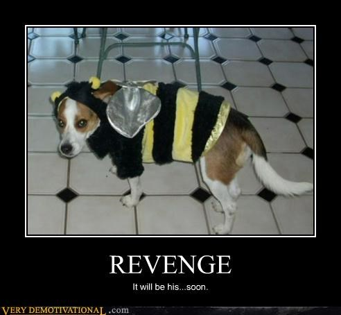 REVENGE It will be his...soon.