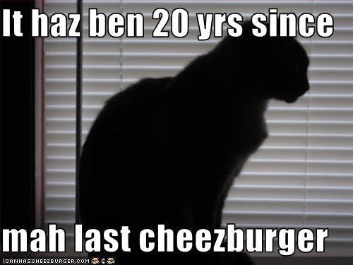 Cheezburger Image 3164219136