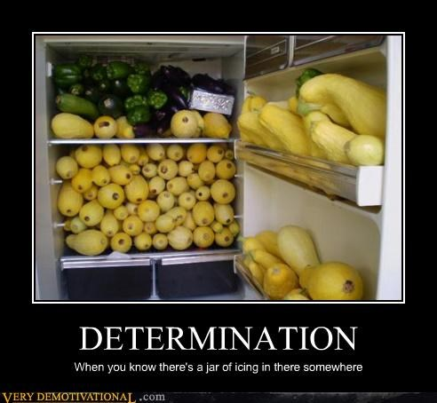 vegetables,wtf,squash,determination