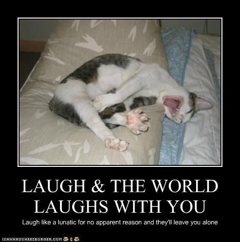 crazy laughing - 3164913152
