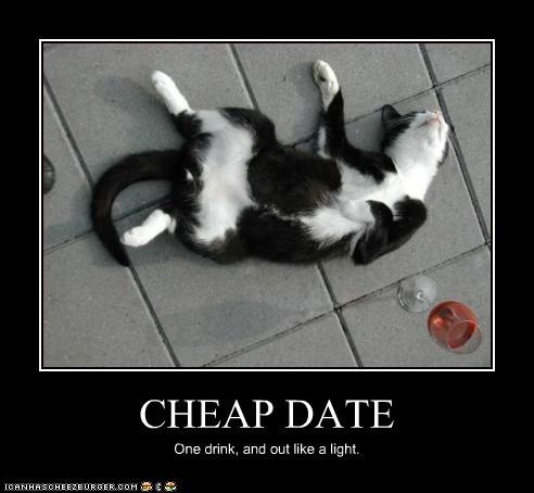 cheap dating drunk - 3166641920