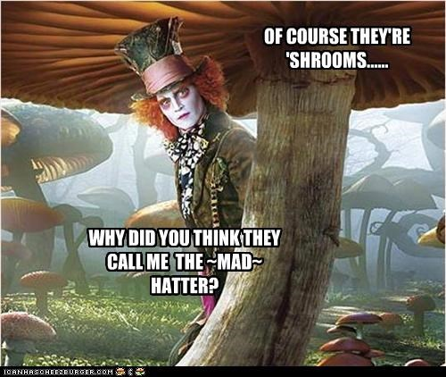 OF COURSE THEY'RE 'SHROOMS...... WHY DID YOU THINK THEY CALL ME THE ~MAD~ HATTER?