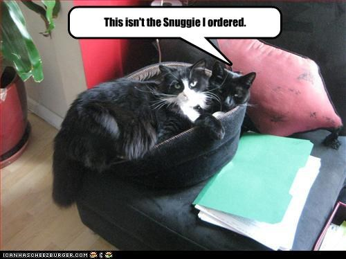 bed Cats crowded snuggie - 3171646720