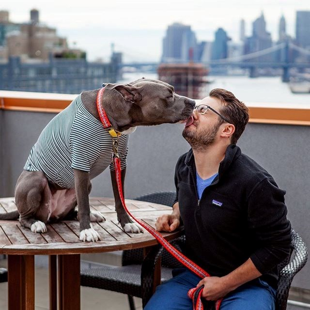 PHOTOS OF DOGS AND THEIR OWNERS