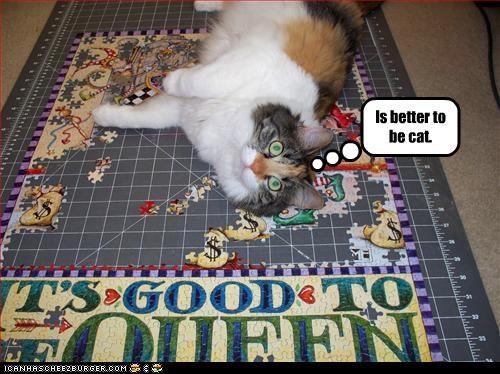 happy rug smug - 3172667648
