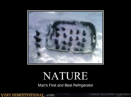 nature snow refrigerator - 3172966400