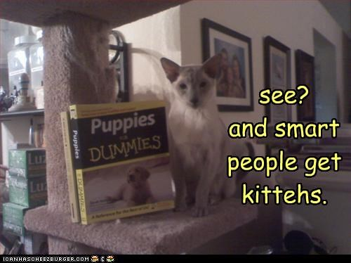 see? and smart people get kittehs.