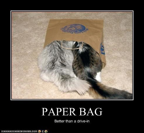 PAPER BAG Better than a drive-in