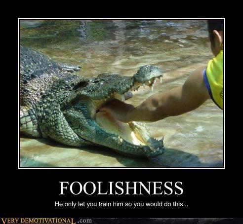bad idea hand aligator - 3174533888