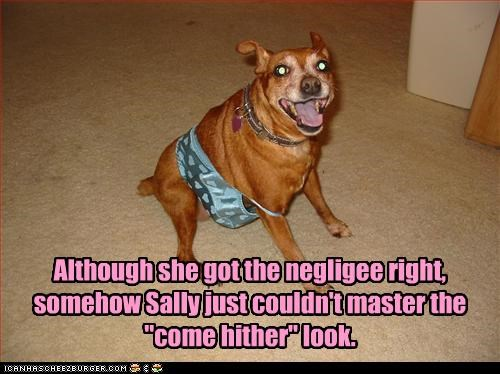 "Although she got the negligee right, somehow Sally just couldn't master the ""come hither"" look."