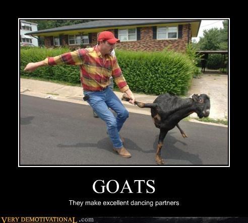 goat,wtf,dance