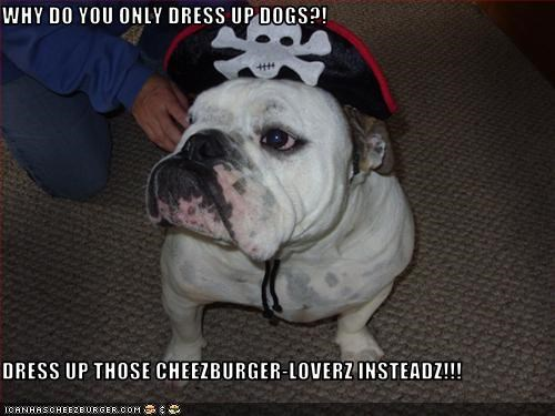 Cheezburger Image 3175820288