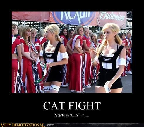 cat fight noms Pure Awesome want