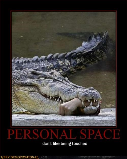 alligator awesome crocodile Death eating people Pure Awesome swamps