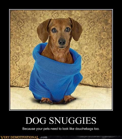 cult demotivate demotivational douchebags hilarious Sad Snuggies weiner dogs - 3177045248