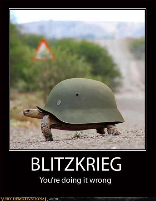 awesome blitzkrieg helmets hilarious slow turtles - 3178753536