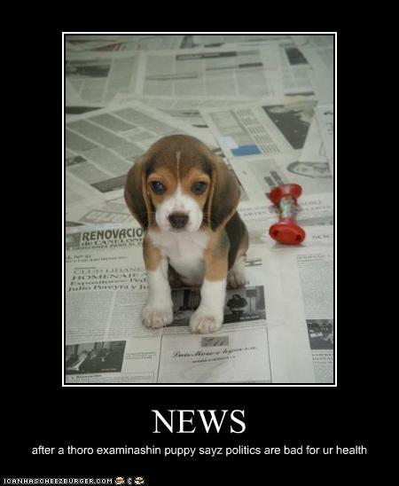 NEWS after a thoro examinashin puppy sayz politics are bad for ur health