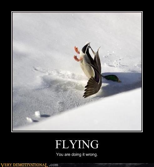 ducks flying Sad snow You are doing it wrong