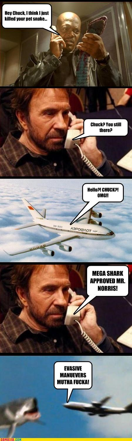 chuck norris,From the Movies,Megashark,planes,Samuel Jackson,snakes,the internets,Total Awesome