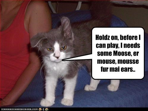 Holdz on, before I can play, I needs some Moose, er mouse, mousse fur mai ears..