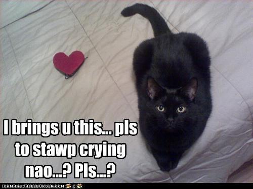 I brings u this... pls to stawp crying nao...? Pls...?