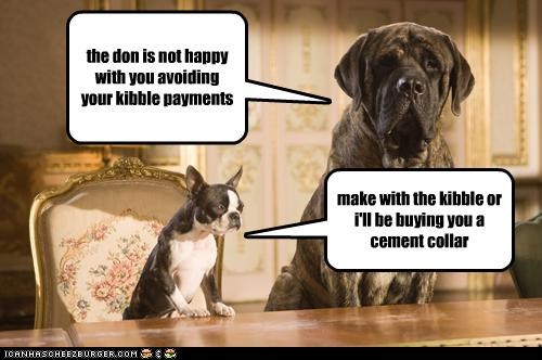the don is not happy with you avoiding your kibble payments make with the kibble or i'll be buying you a cement collar