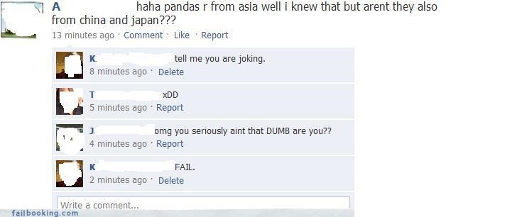 asians oh snap panda yikes