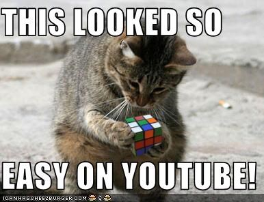 cat,puzzle,rubix cube,youtube