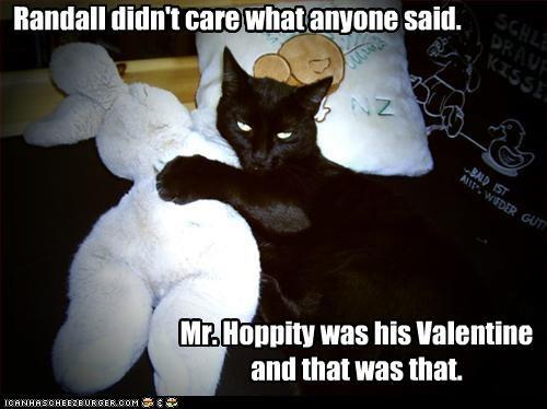 basement cat bunny cat valentine - 3193509120