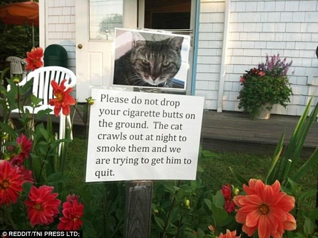 a funny letter put to worn other neighbors