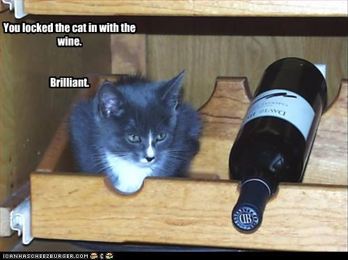 You locked the cat in with the wine. Brilliant.