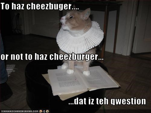 Cheezburger Image 3196071168