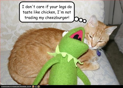 Cheezburger Image 3197537536