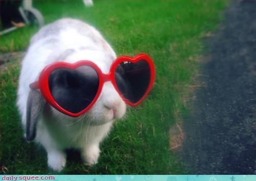 80s bunny glasses - 3197903360