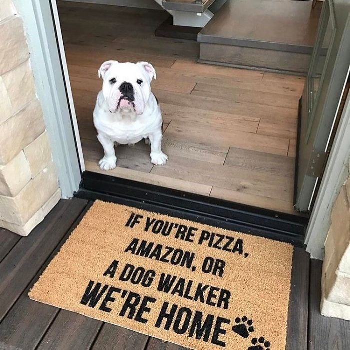 funny animal doormats