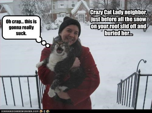 Crazy Cat Lady neighbor, just before all the snow on your roof slid off and buried her... Oh crap... this is gonna really suck.