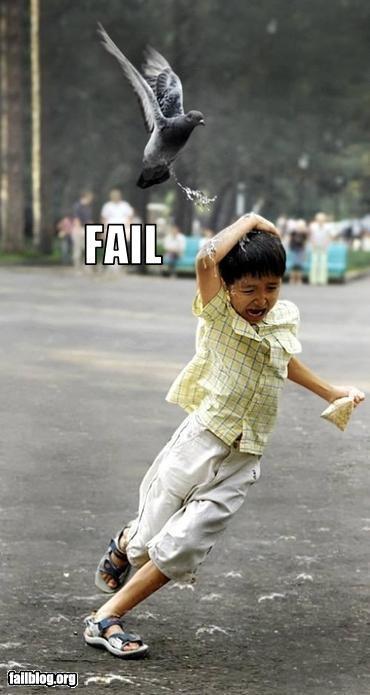 Kid fail or bird win?