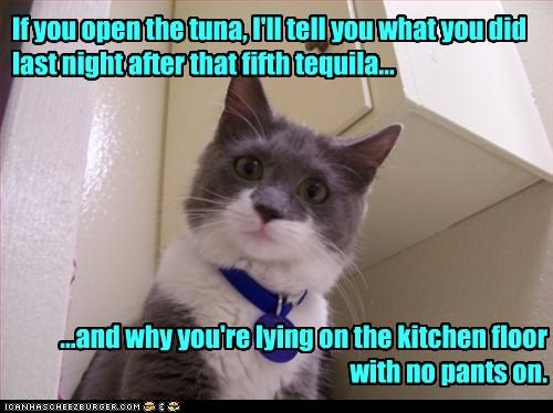 bribe,cat,drinking,tequila,tuna