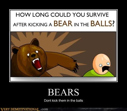 advice,ball kicking,bears,cartoons,danger,hilarious,Terrifying