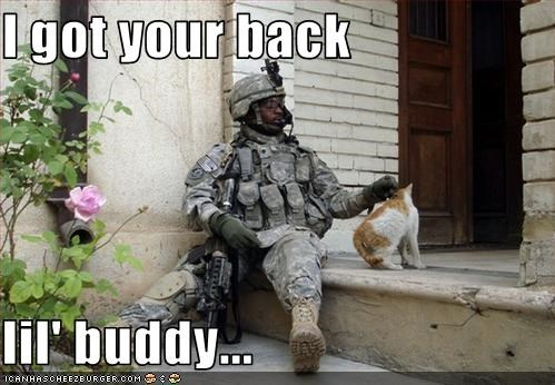 aww cat lolcats soldier - 3205959424