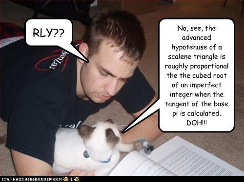 cat math tutor - 3206518784