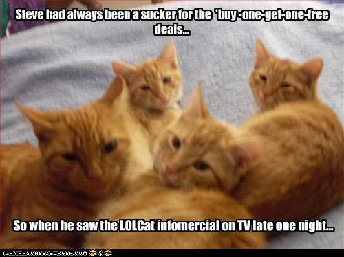 Cats,infomercial,sale