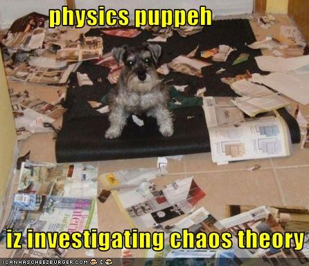 chaos theory,mess,physics,schnauzer,science